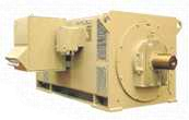 Medium & High Voltage Induction Motors